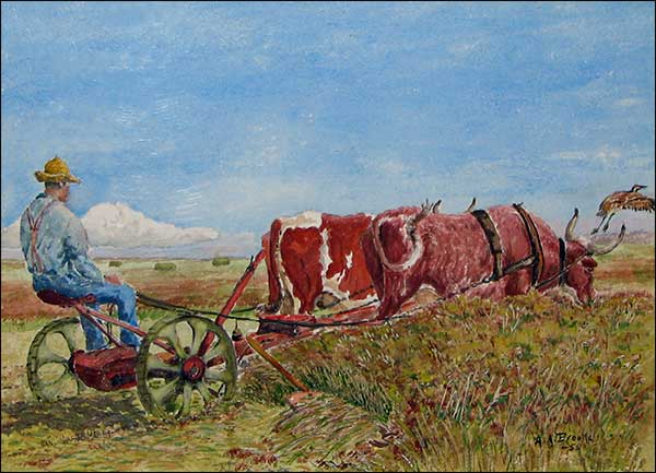 man on plow with oxen